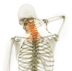 Back & Neck Injuries